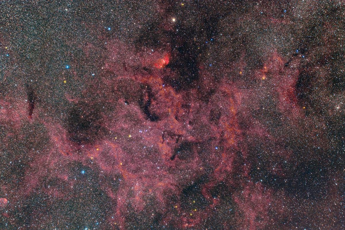 チューリップ星雲