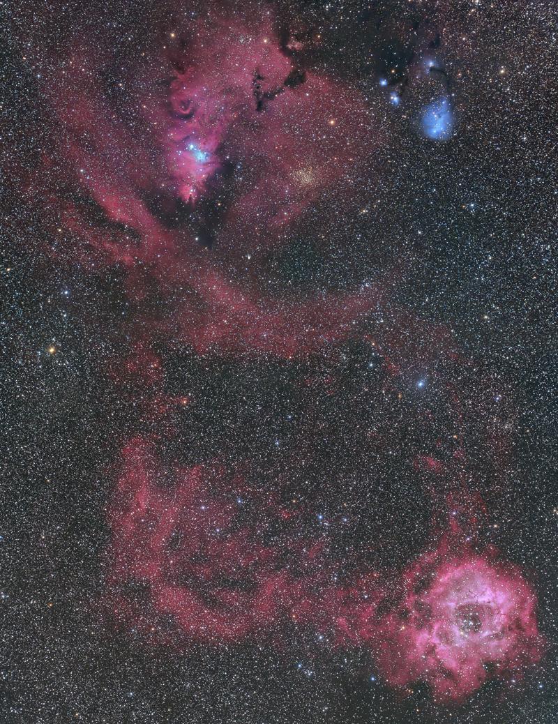 クリスマスツリー星雲
