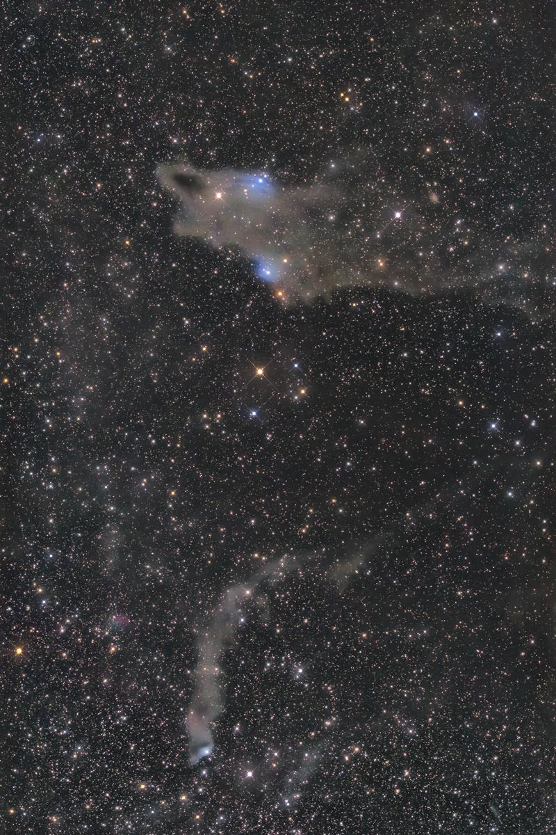 シャーク星雲