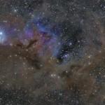 IC348NGC1333