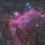 カモメ星雲
